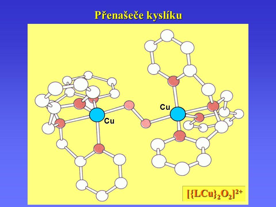Přenašeče kyslíku Cu [{LCu}2O2]2+